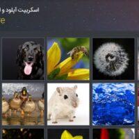 اسکریپت آپلود و اشتراک عکس imgshare