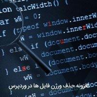 افزونه حذف ورژن فایل ها در وردپرس