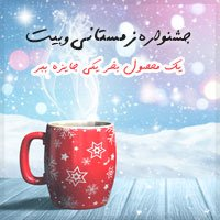 جشنواره زمستانی وبیت