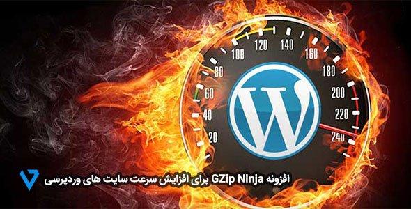 GZip-Ninja افزونه GZip Ninja برای افزایش سرعت سایت های وردپرسی
