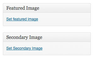 multiple-post-thumbnails افزودن تصویر شاخص دوم به نوشته وردپرس