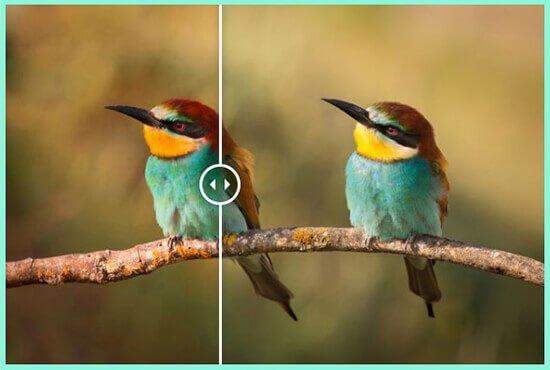 نمایش تصاویر قبل و بعد در وردپرس
