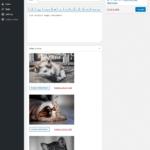 آپلود فایل و عکس در نظرات وردپرس توسط کاربر